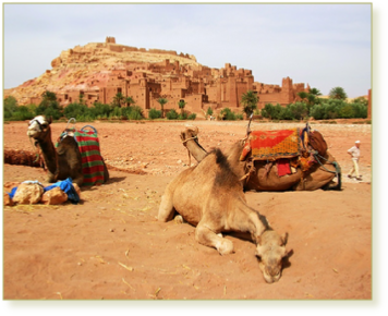 Family Adventure for Families in Morocco