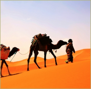 3 days desert tour : Marrakech to Chigaga and night in camp