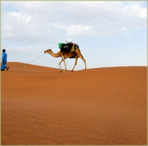 3 Day New Year Tour from Marrakech To Sahara