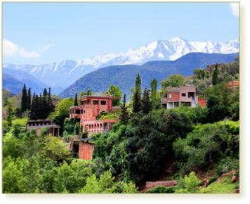 Ourika Valley & Atlas Day Tour from Marrakech