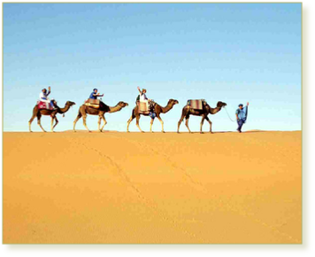 Ouarzazate to Desert Tours